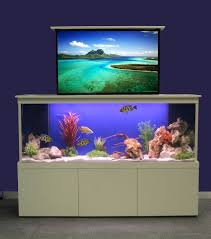 Decorations Modern Minimalist White Frame Fish Aquarium In Home