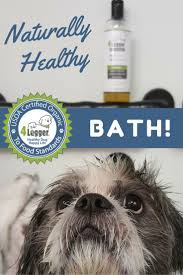 10 best lemongrass and aloe hypoallergenic dog shampoo images on
