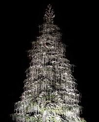 Decor Christmas Lights by Free Images Black And White Night Tower Fir Lighting Decor