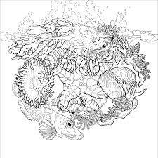 color the natural world workman publishing