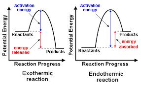 chemical reaction encyclopedia article citizendium