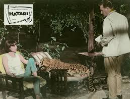 elsa martinelli hatari hatari film 1961 trailer kritik kino de