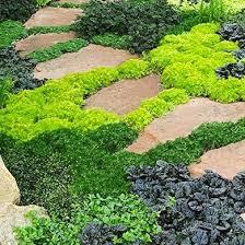 lawn alternatives 10 ways to keep off the grass bob vila