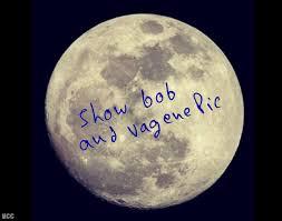 Moon Meme - show bobs and vagene pic funny moon meme