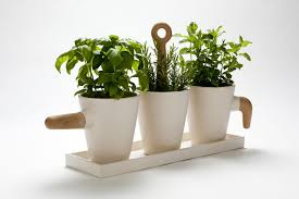 kitchen herb pot nueve estudio product design