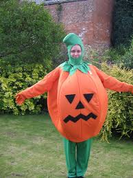 pumpkin costume pumpkin costume for hire world
