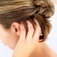 prurito testa e corpo prurito alla testa cuoio capelluto quali sono le cause