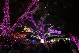 best christmas lights in houston november golist best things to do with houston kids this month
