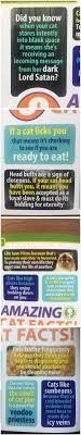 Cat Facts Meme - amazing cat facts meme collection