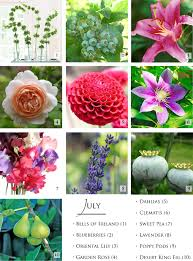 Wedding Flowers July Seasonal Flowers For Summer July Gardening Pinterest July