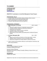 Resume Examples For Bank Teller by Examples Of Resumes 93 Terrific Example A Professional Resume
