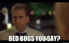Bed Bug Meme - bed bugs you say nicolas cage quickmeme