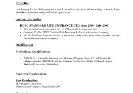 professional resume format pdf download resume simple resume format sle doc resume sles in pdf