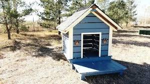 cool dog houses cool dog houses cool dog houses dog houses for outside