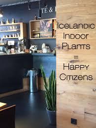 planterra wins three plant installation awards