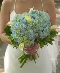 Hydrangea Wedding Download Hydrangea Wedding Flowers Wedding Corners