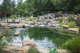 Aquascape Water Features Large Pond Lake Water Feature Services Contractor Mckinney Allen