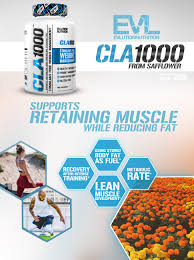 amazon com evlution nutrition cla 1000 conjugated linoleic acid