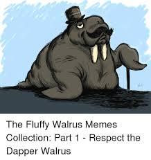 Walrus Meme - ri the fluffy walrus memes collection part 1 respect the dapper