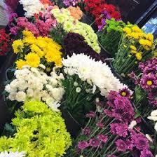 fremont flowers fremont flowers fremont flowers on