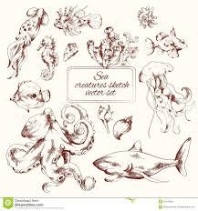 sea creatures sketch stock vector image of creature 45142560