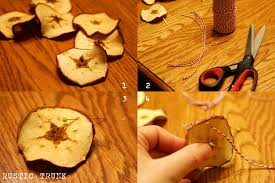 Apple Decor For Home 12 Diy Organic Christmas Decorations That Will Make Your Home Look