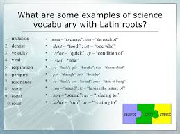 learning science vocabulary through knowledge of greek and latin roots