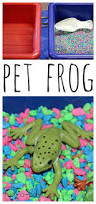 84 best pets images on pinterest pet theme preschool themes and