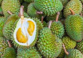 top 10 tropical fruits and how to prepare them