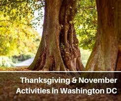 washington dc travel tips discounts more