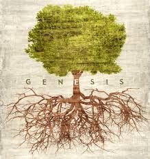 genesis bible study u2013 melissa danisi