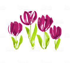 color paint concept modern tulip flower sketch hand drawn spring