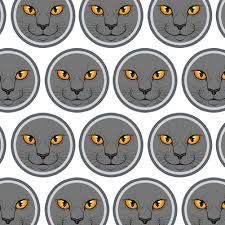 cat wrapping paper premium gift wrap wrapping paper roll cat kitten ebay