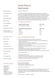 no work experience intern resume pinterest student