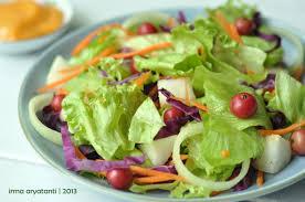 cara membuat salad sayur atau buah panci baris salad