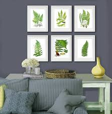 Fern Decor by Amazon Com Fern Botanical Wall Art Unframed Set Of 6 Home Decor