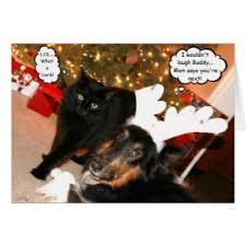 funny dog cat christmas cards invitations greeting u0026 photo