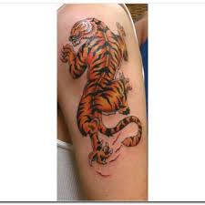 tiger 5 tiger arm on tattoochief com