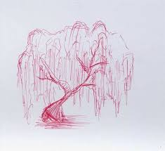 how to draw a wheeping willow tree with pictures ehow