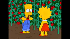 the simpsons the simpsons chief wiggum and ralph try tomacco youtube