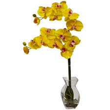 yellow orchid nearly phalaenopsis orchid with vase arrangement in yellow