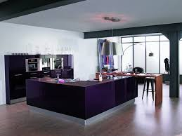 deco cuisine violet 13 best cuisine violette images on kitchens violets