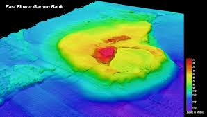 Gulf Of Mexico Depth Map by Flower Garden Banks National Marine Sanctuary Maps