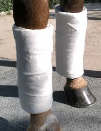 no bow wraps flannel standing wraps with options four eventing gear