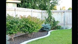 Landscaping Ideas For Backyard Privacy Landscape Ideas For Privacy Canadiantruckfest