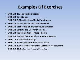 Anatomy And Physiology Exercise 10 Globalizing Science Courses In The Online Environment Ppt Video