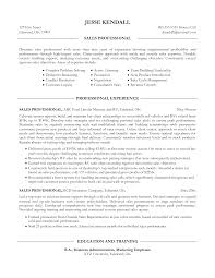 Professional Resume Professional Sales Resume Resume Template U0026 Professional Resume