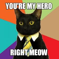 Kitty Meme Generator - meme creator business cat meme generator at memecreator org