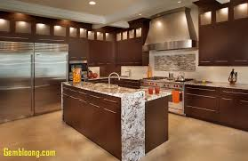 dark wood kitchen cabinets kitchen dark wood kitchen cabinets best of light cabinets light