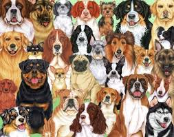 boxer dog jigsaw puzzles 96 best puzzles my way images on pinterest puzzles puppies and